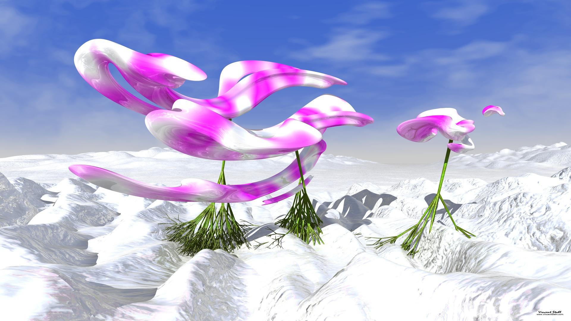 Anaglyph 3d flower wallpaper 856940 for 3d white flower wallpaper