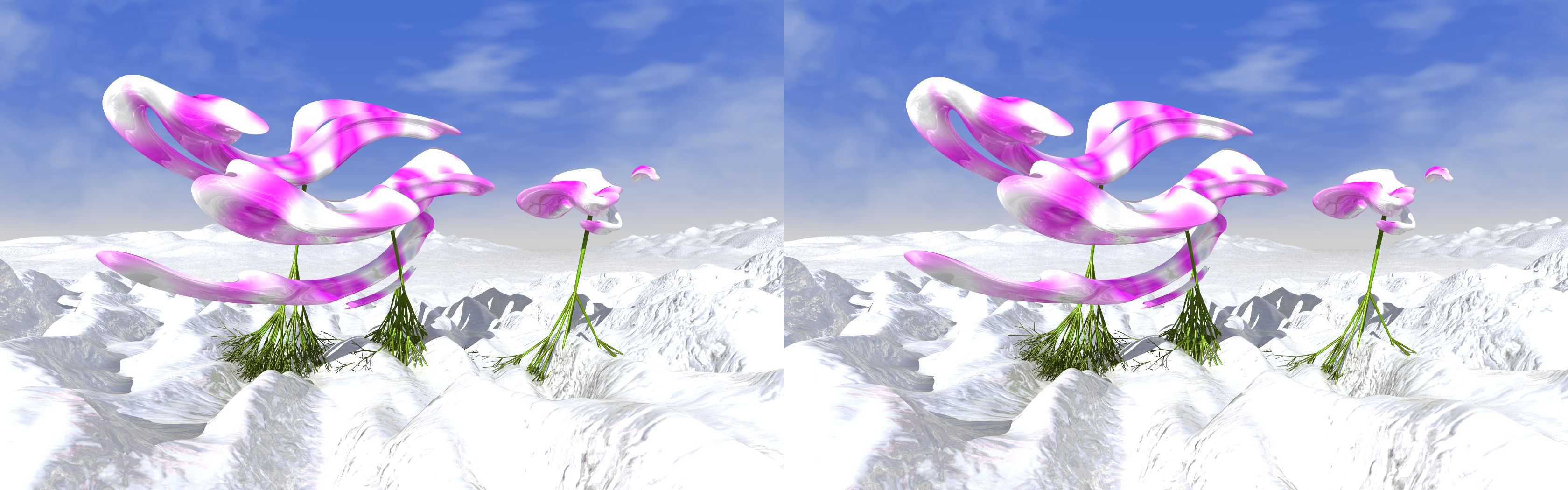Orchids On Ice - 3D stereo JPS image