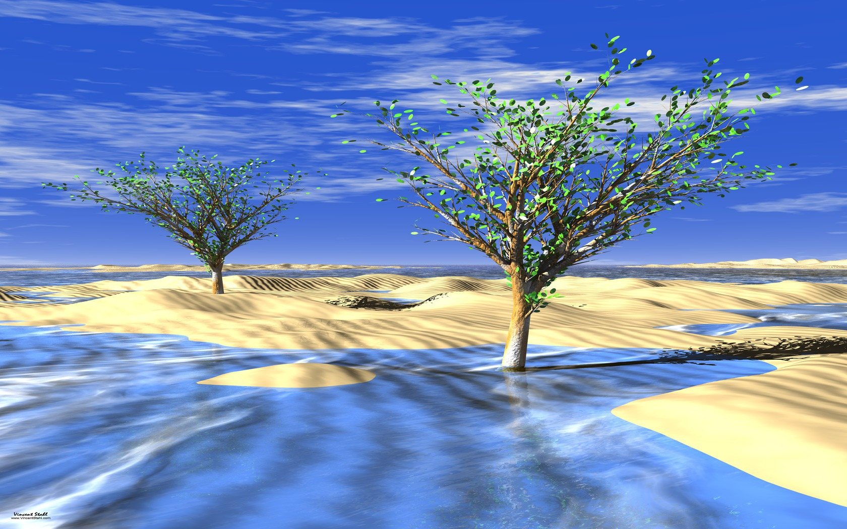 Frozen Desert Trees - Desktop backgrounds